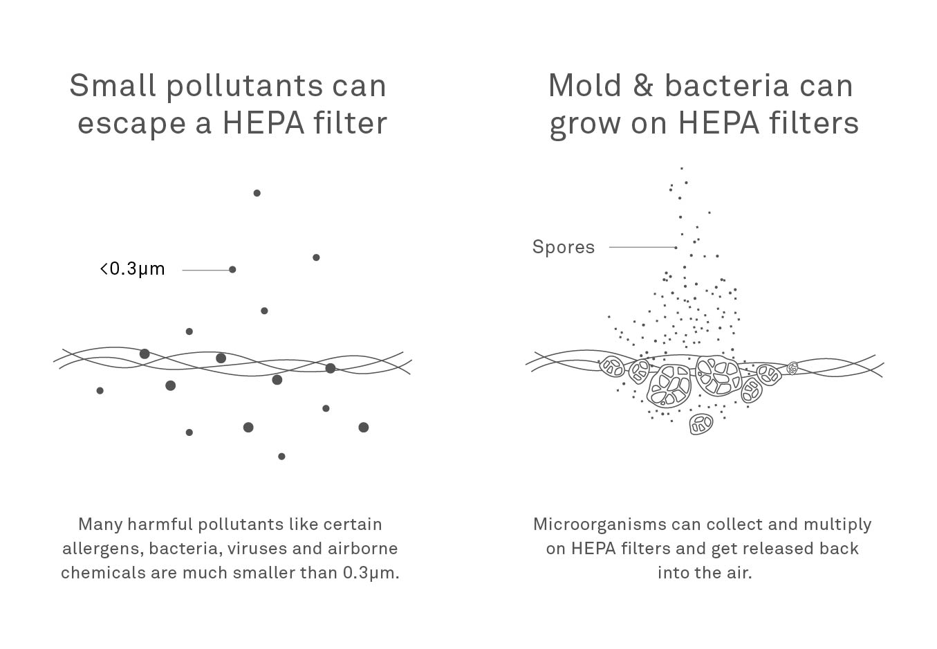 HEPA filter drawbacks include small particles passing through and possibility of mold growth on filter surface.
