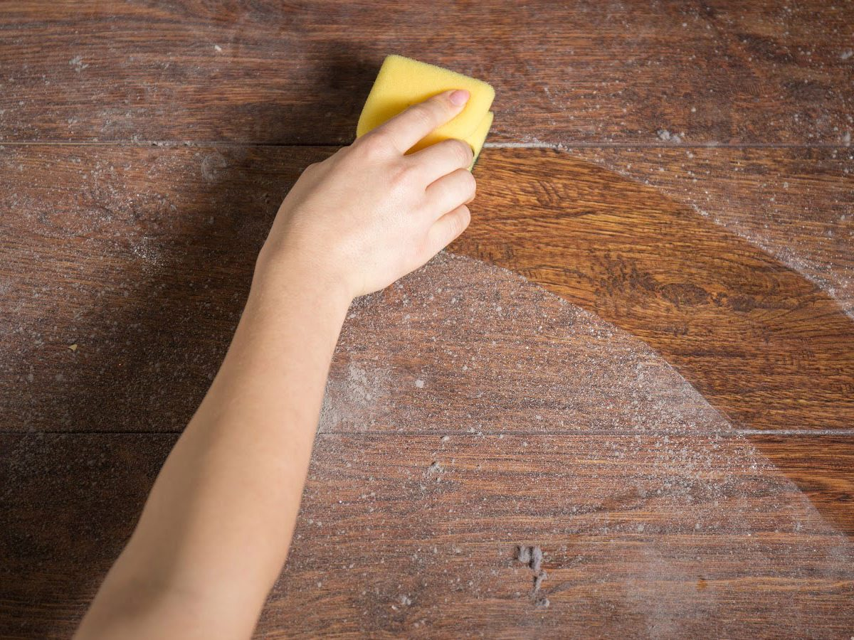Where Does Dust Come From Guide To Sources In House And Solutions Molekule Blog
