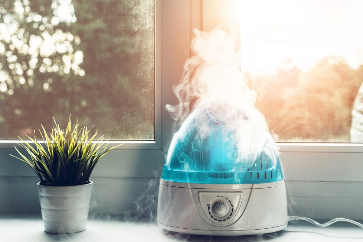 humidifier by window