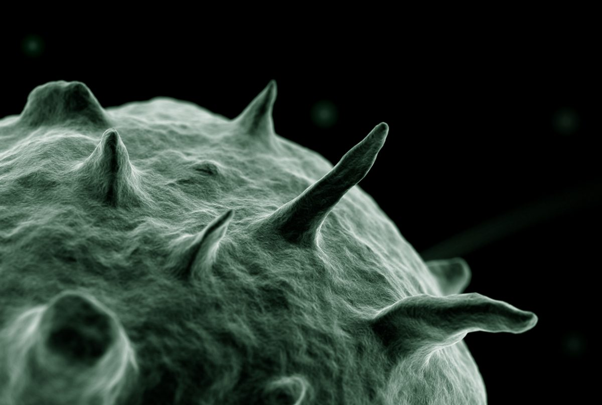 Air Purifier Bacteria Germs