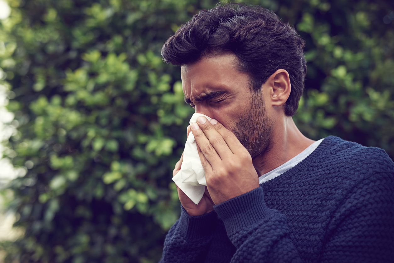 pollen and mold counts
