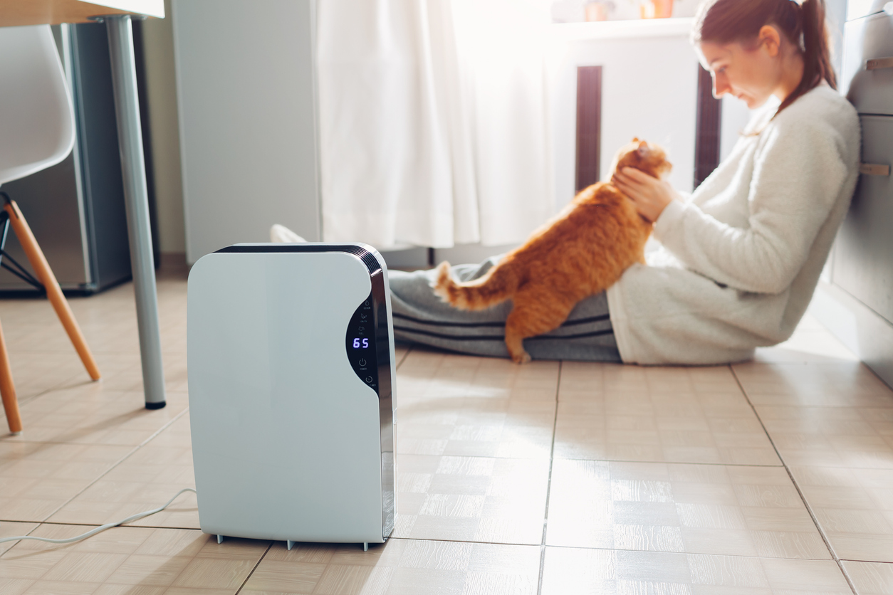 What Is An Air Purifier And Why Do I Need One?